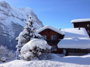 Snowy-Hut-Snow-Mountains-Mountain-Hut-Wintry-110094-500x375